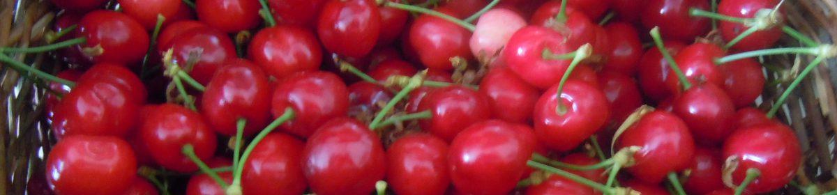 fiorinellasabbia